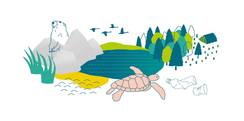 FUE-illustrationen-umwelt-natur_clarahuesch